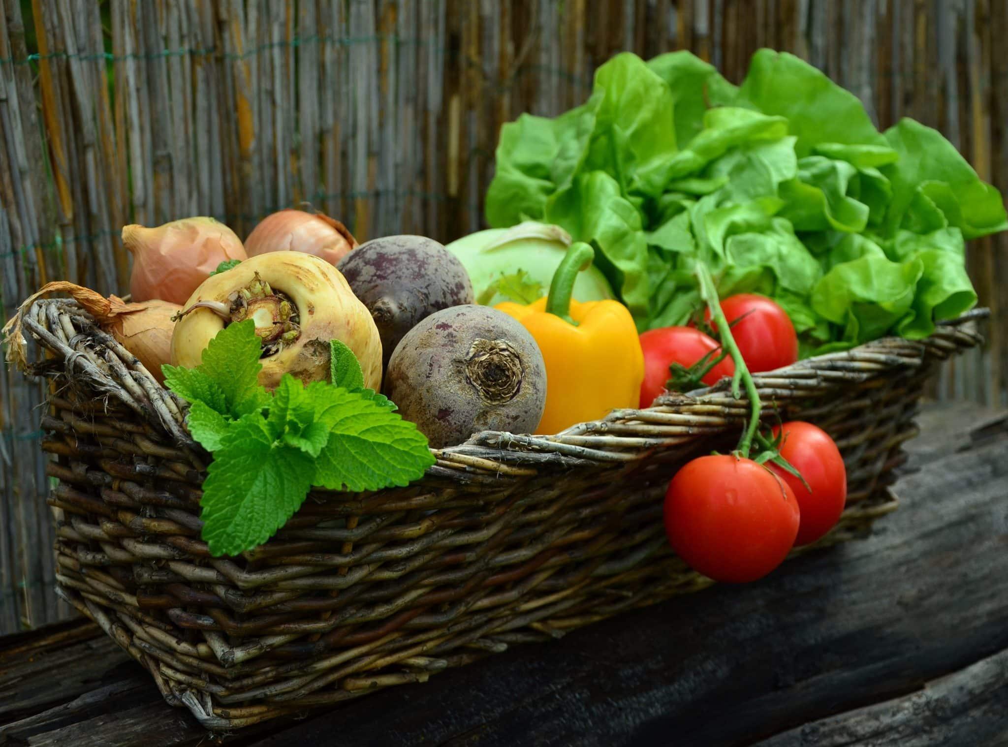Panier en oseille avec des légumes